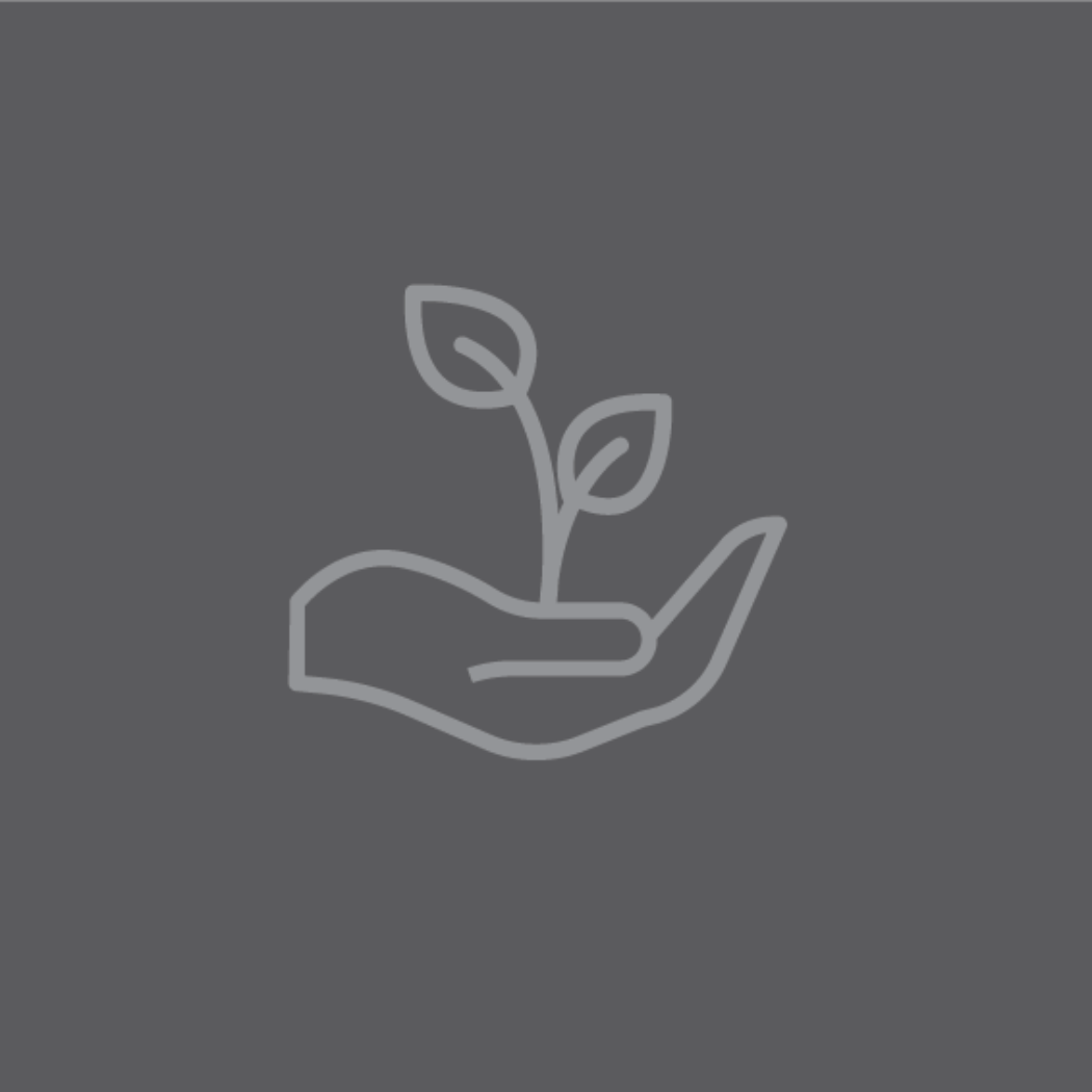 vector image of hand with plant in it