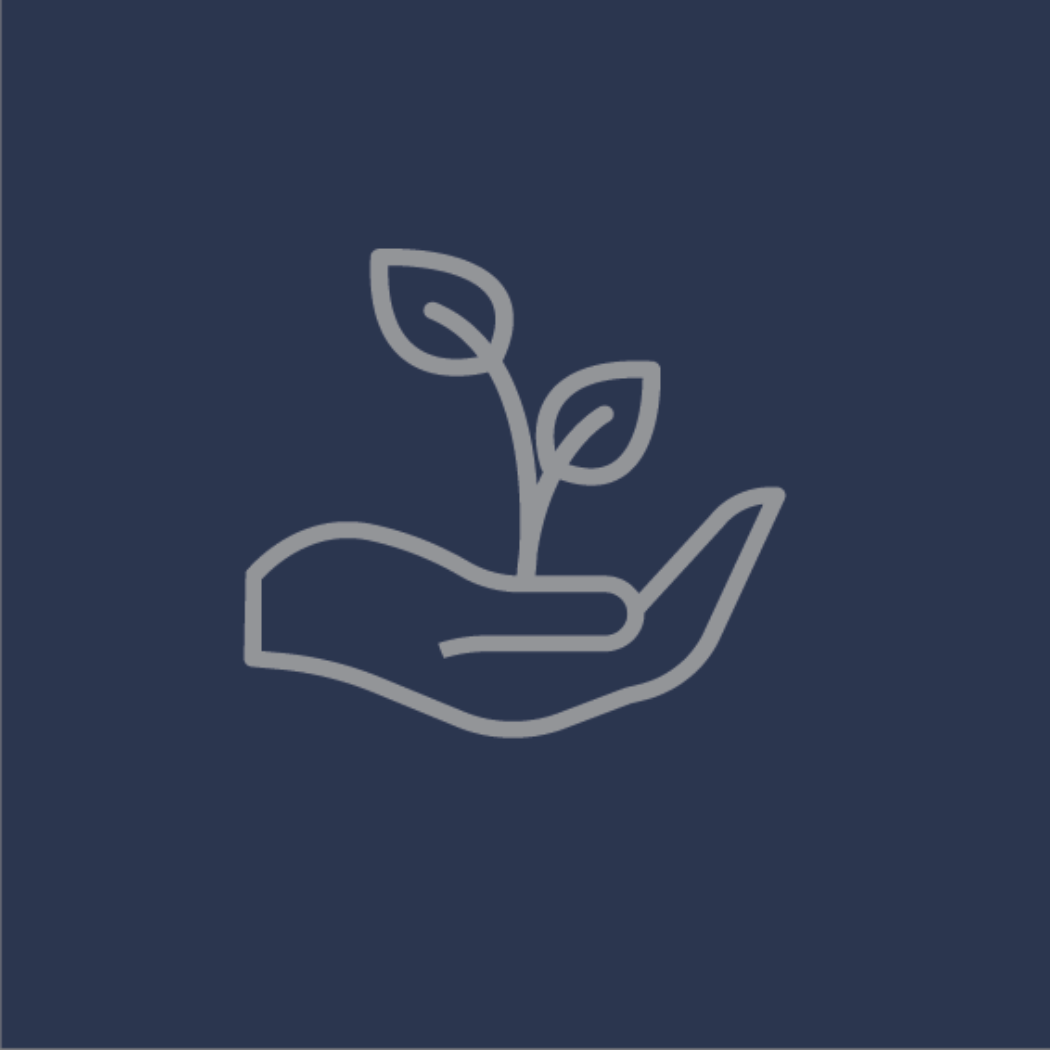 vector image of hand with a plant in it