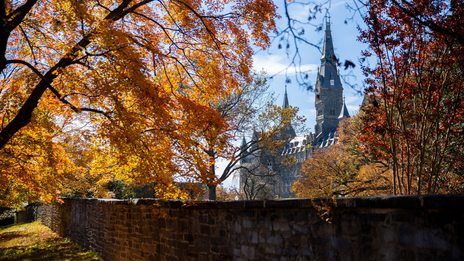 Photo of Front Gates in Fall with orange and brownish-red leaves- Healy Hall in background