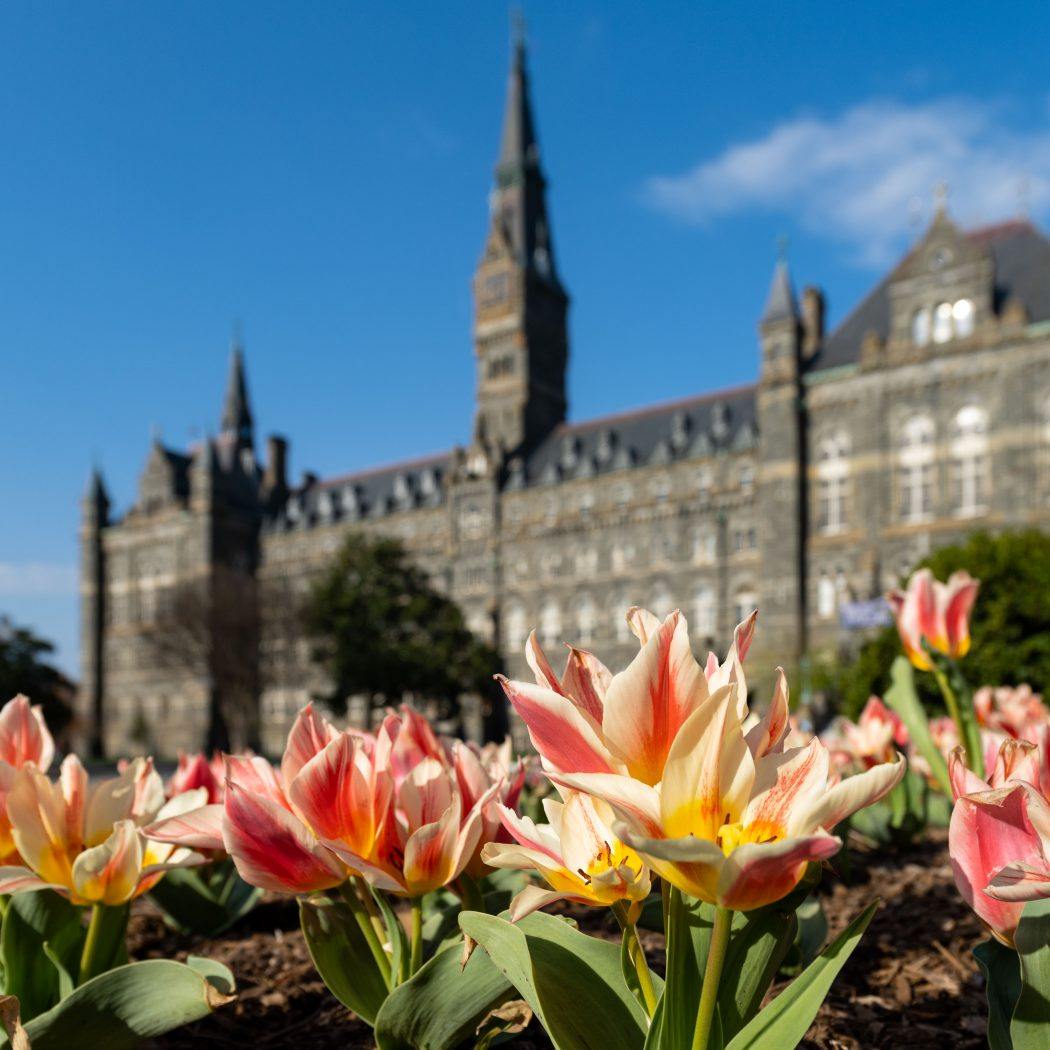 Healy Hall in the springtime